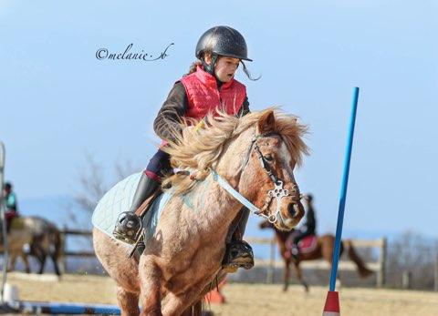 Cours d equitation Romans-sur-Isère
