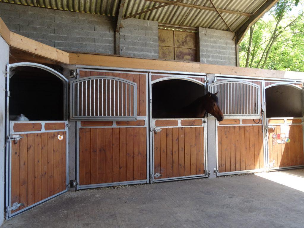 Pension box cheval Romans-sur-Isère