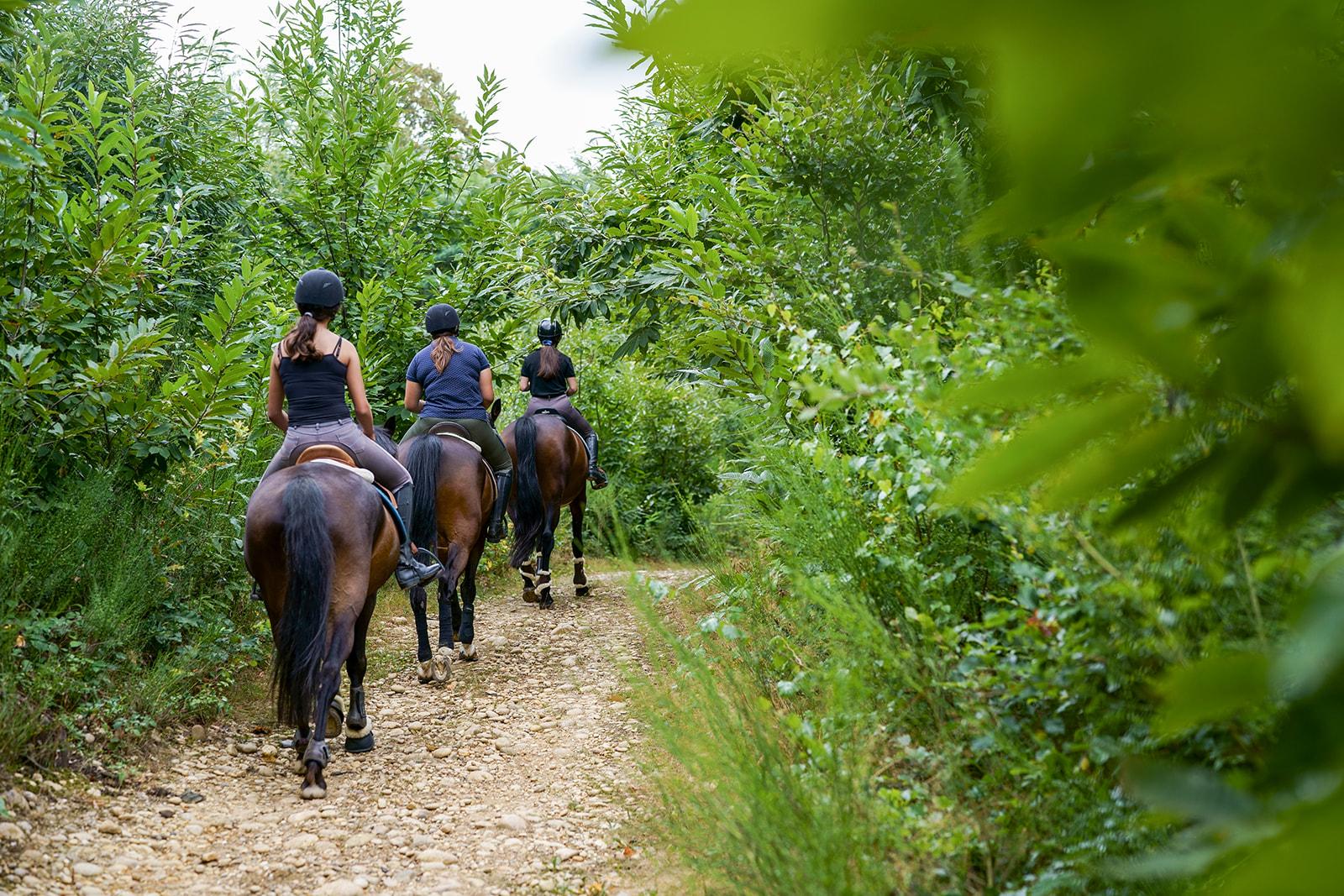 Balade cheval Romans-sur-Isère
